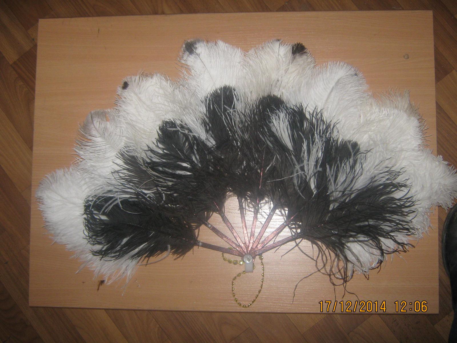 Поделка из перьев страуса 86
